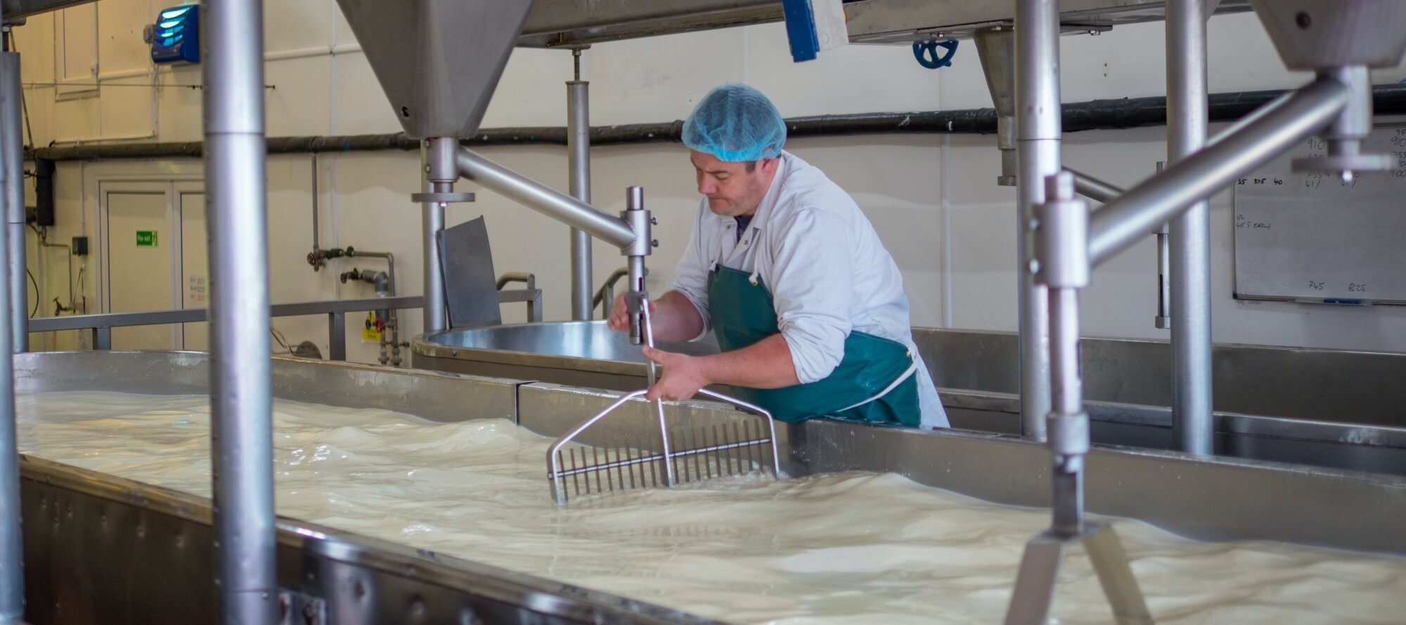 Food Processing Safety Boots.jpg